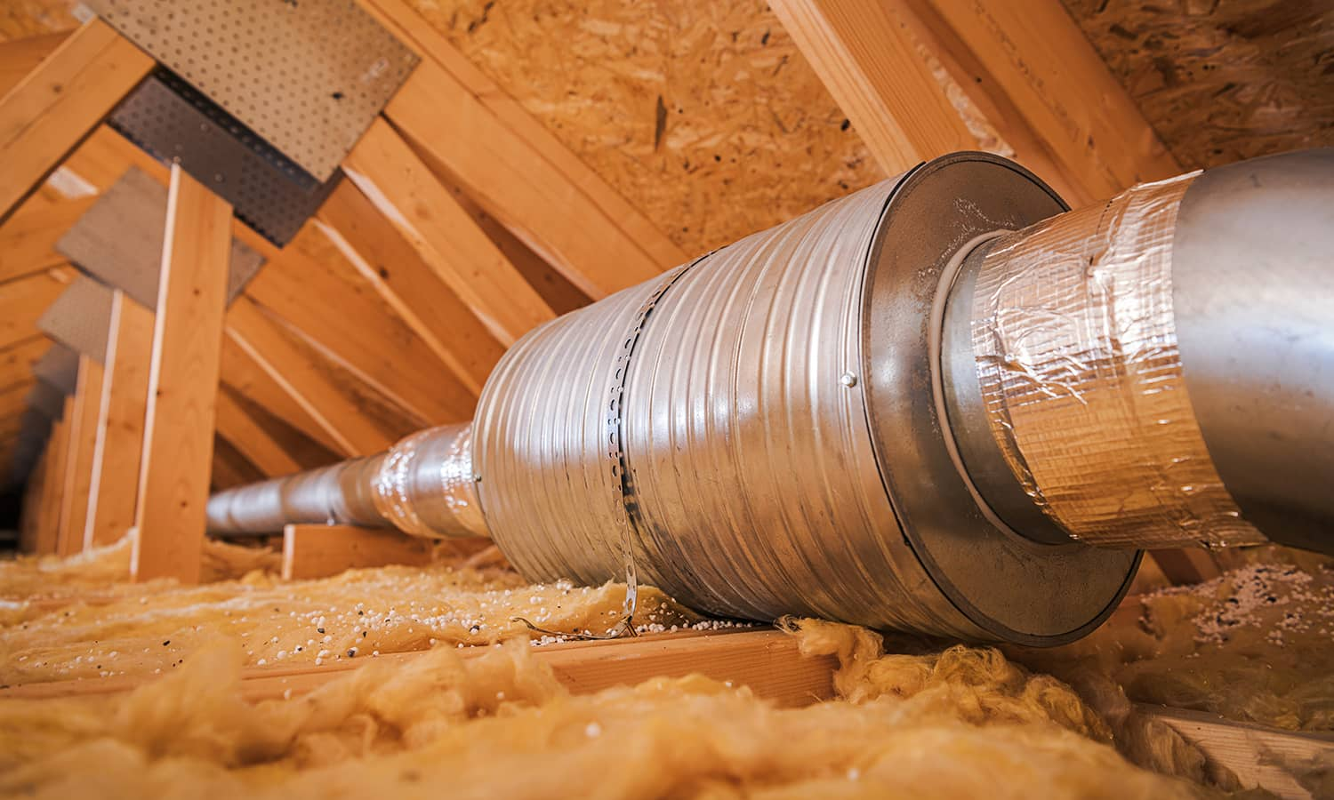 crawl-space-cleaning-los-angeles